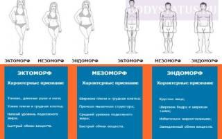 Гейнер для эктоморфа: какой выбрать и как принимать