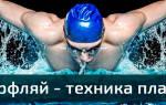 Как научиться плавать «баттерфляем», техника баттерфляя шаг за шагом, статья с видеоуроком