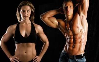 Основные отличия мужских и женских тренировок, чем отличается женская тренировка от мужской