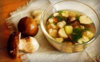 Суп грибной: полезные свойства, химический состав и вред продукта