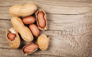 Чем вреден и чем полезен арахис, арахис: вреден или нет