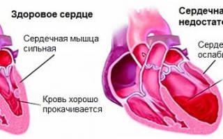 Нормальный пульс у мужчин – нормы по возрастам