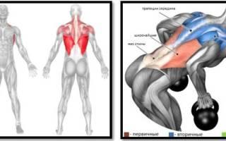 Ищете упражнения с гирями для спины О том как делать тягу гирь в наклоне