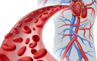 какие ванны помогают улучшить кровообращение, рецепты ванн для улучшения кровообращения