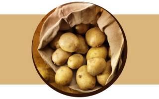 Сколько калорий в картошке на 100 грамм, калорийность картошки вареной, жареной, в мундире, фри