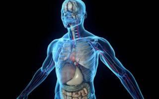 Анаболики – что это, зачем нужны анаболики и в чем их опасность для организма
