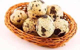 Перепелиные яйца при панкреатите – как употреблять