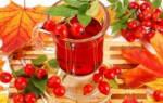 Отвар шиповника при панкреатите – польза, применение, рецепт приготовления
