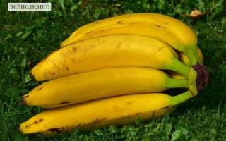 Калорийность банана: на 100 грамм, в 1 штуке и без кожуры, пищевая ценность и химический состав