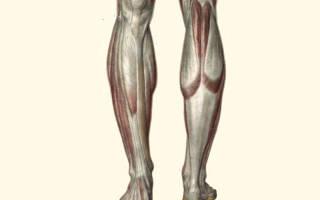 Сильно мерзнут ноги: причины и лечение