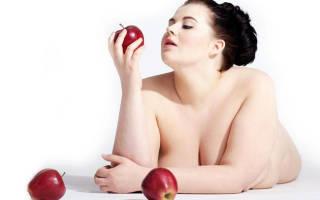 Что такое натуральные сжигатели жира, какие натуральные жиросжигатели для похудения наиболее эффективны